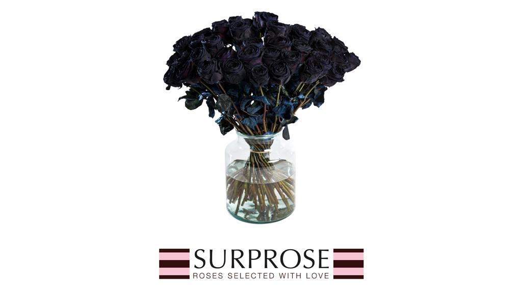 schwarze-rosen-gefaerbt